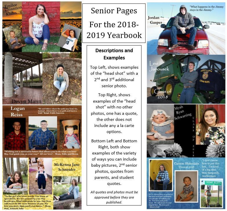 Senior Pages in Annual