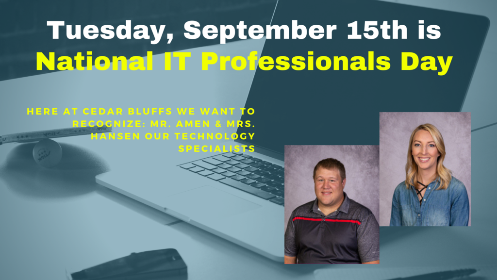 National IT professionals day